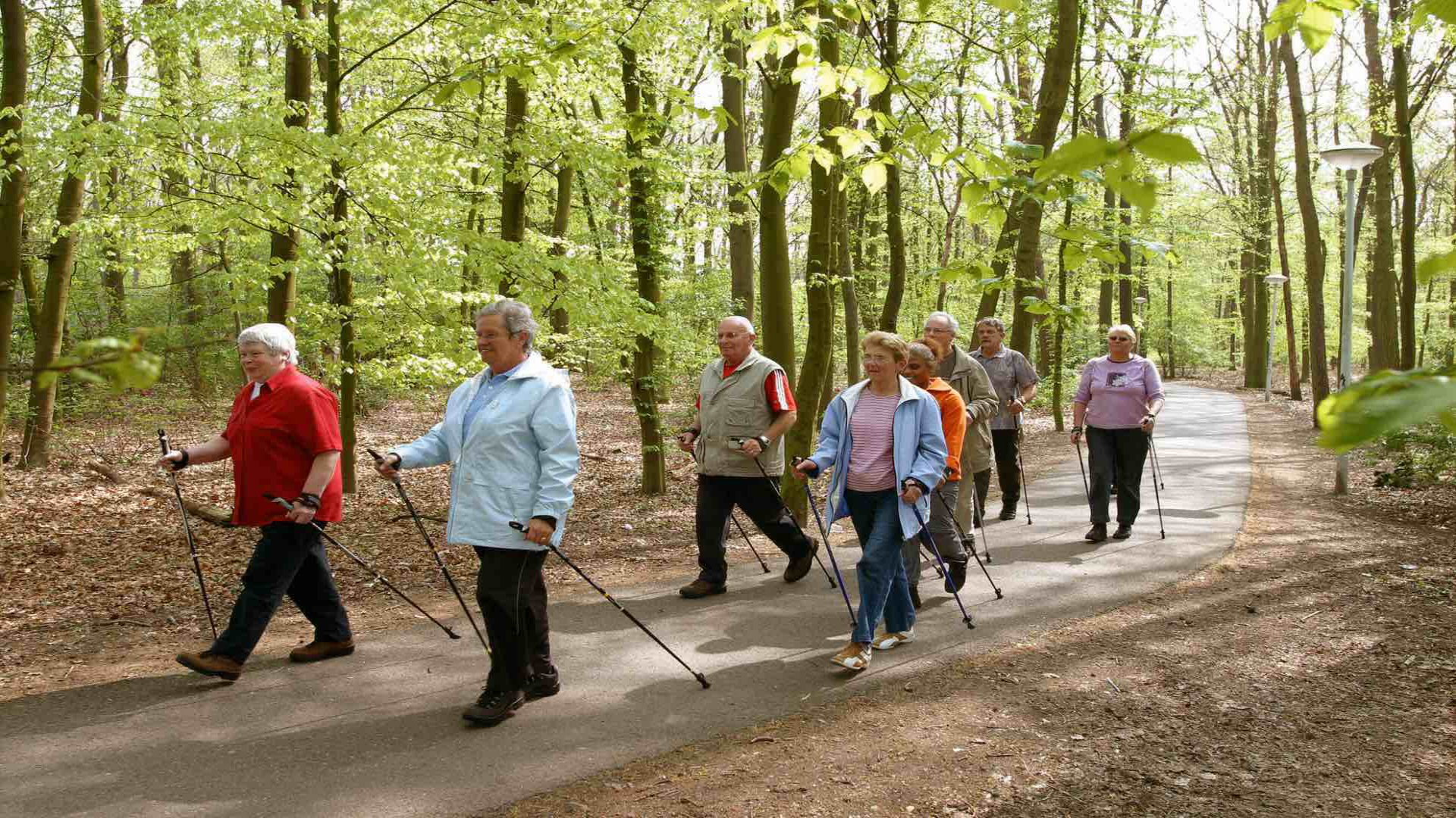 Nordic Walking in het bos